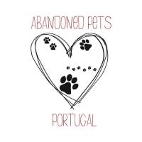 Abandoned Pets