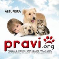 PRAVI ALBUFEIRA