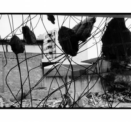 Fotografia - Renato Roque