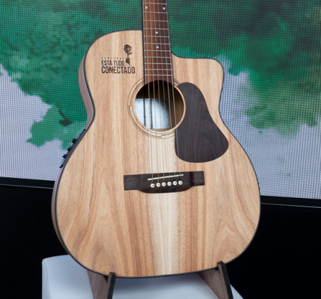 Guitar made with wood from burned Portuguese forests - 2