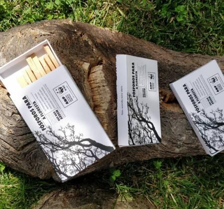 Caixa de fósforos da edição Fósforos para a Floresta da ANP|WWF