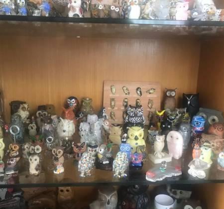 Coleção de 300 corujas de diversos tamanhos