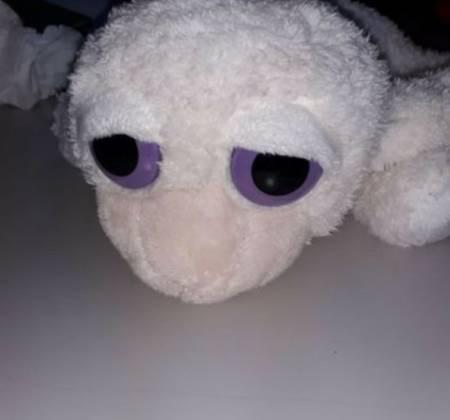 Peluche ovelha