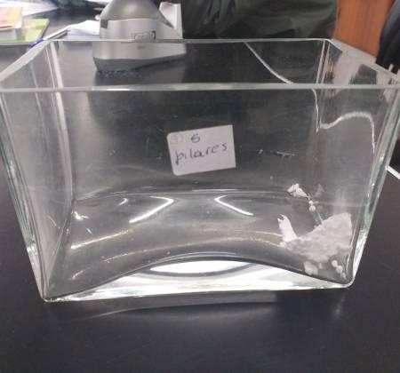 Suporte de vidro